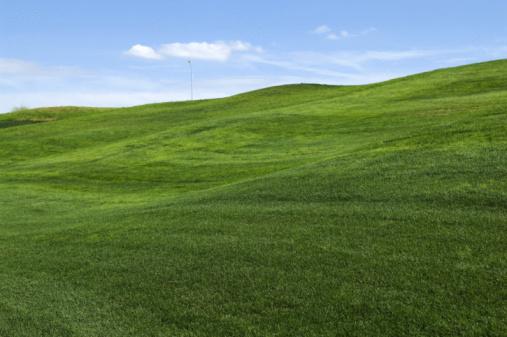 Rolling Landscape「Rolling hills of green grass on lawn」:スマホ壁紙(14)