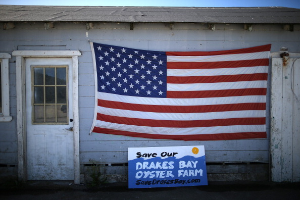 Wilderness Area「Bay Area Oyster Farm Takes Appeals Of Federal Waters Use Case To Supreme Court」:写真・画像(4)[壁紙.com]