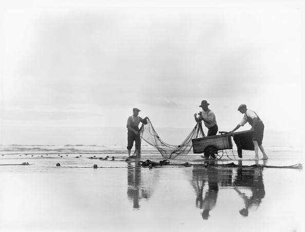 Chaloner Woods「Fishing Nets」:写真・画像(15)[壁紙.com]