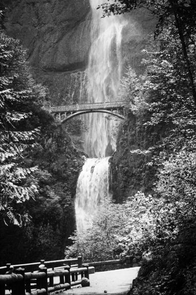 Pacific Northwest「Multnomah Falls」:写真・画像(14)[壁紙.com]
