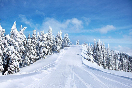 Pacific Northwest「Skiing in Mount Baker」:スマホ壁紙(9)