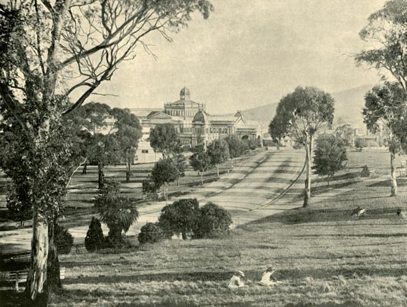 Grass Family「The Hobart Exhibition」:写真・画像(15)[壁紙.com]