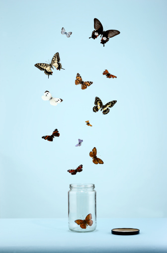 Large Group Of Animals「butterflies escaping from jar」:スマホ壁紙(2)