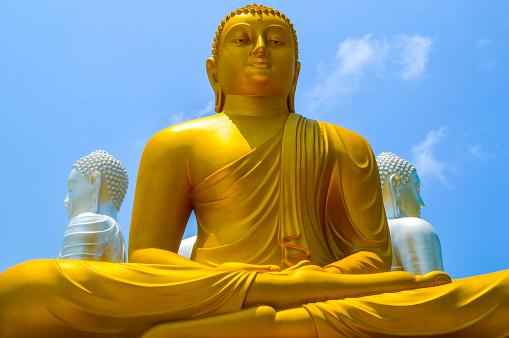 Sri Lanka「Buddha statues at Gangaramaya Temple」:スマホ壁紙(4)