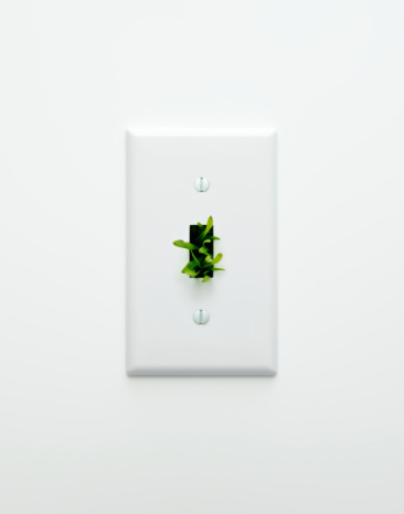 Light Switch「Light switch with grass coming out of it」:スマホ壁紙(19)