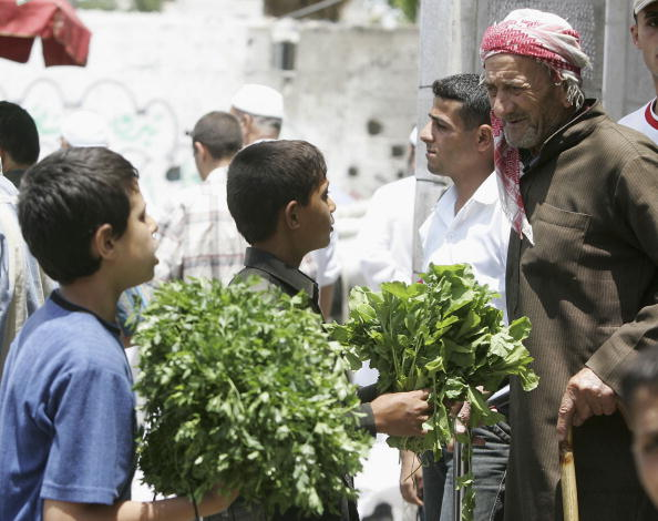 Parsley「Palestinian Children Work To Help Their Families In The Gaza Strip」:写真・画像(11)[壁紙.com]