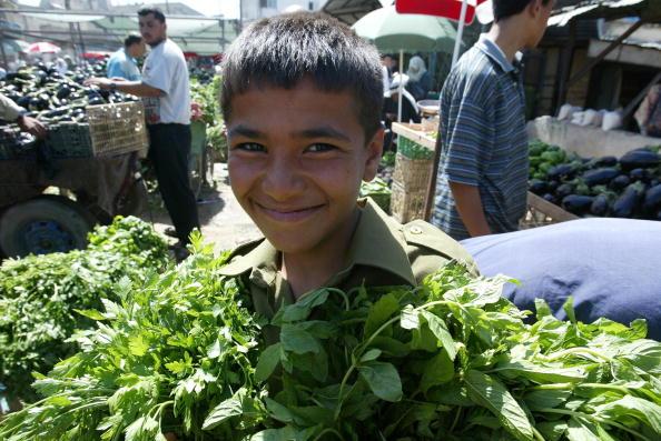 Parsley「Palestinian Children Work To Help Their Families In The Gaza Strip」:写真・画像(16)[壁紙.com]