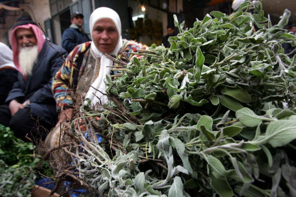 Herb「Palestinian Christian And Muslim Co-existence In Bethlehem Under Threat After Hamas Victory」:写真・画像(17)[壁紙.com]