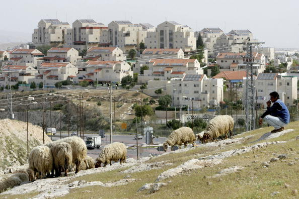 West Bank「Israel Continues Construction At Maale Adumim」:写真・画像(9)[壁紙.com]