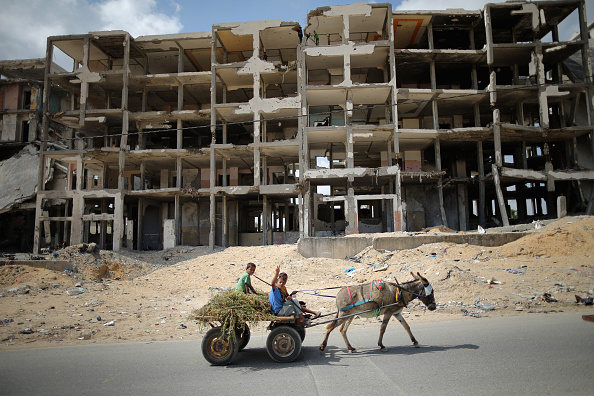 Donkey「Life In Gaza Almost A Year After The 2014 Conflict With Israel」:写真・画像(13)[壁紙.com]