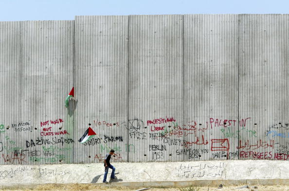 Surrounding Wall「Protest against Israel's wall」:写真・画像(8)[壁紙.com]