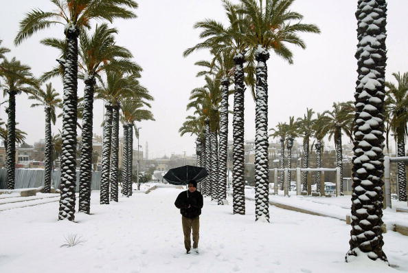 Snowing「Jerusalem Hit By A Second Day Of Snowfall」:写真・画像(8)[壁紙.com]
