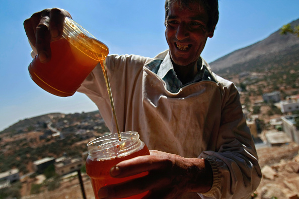 Honey「Bees Provide A Source Of Income For Unemployed Palestinian」:写真・画像(13)[壁紙.com]