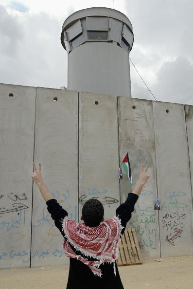Human Arm「Palestinian protest against Israel's security barrier」:写真・画像(8)[壁紙.com]