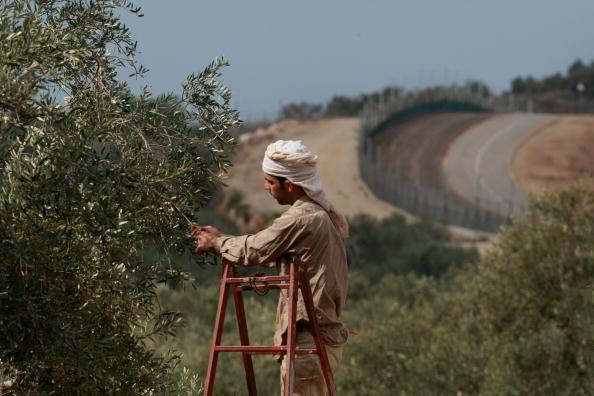 West Bank「Humanitarian Aid Groups Tackle Palestinian Water Crisis」:写真・画像(14)[壁紙.com]