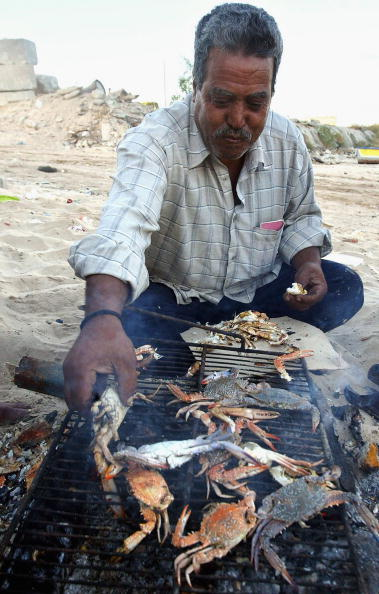 Fisherman「Fishing Industry Remains Central To Economy Of Gaza Strip」:写真・画像(6)[壁紙.com]