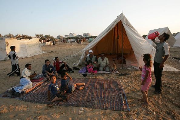Rafah「Palestinians Await Cease-Fire Between Resistance And Israel」:写真・画像(9)[壁紙.com]