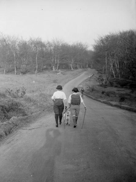 Two People「Epping Forest」:写真・画像(14)[壁紙.com]