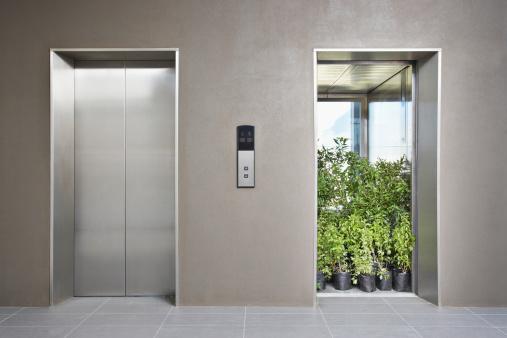 Corporate Business「Office elevator full of plants」:スマホ壁紙(5)