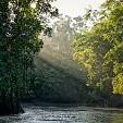 アマゾン川壁紙の画像(壁紙.com)