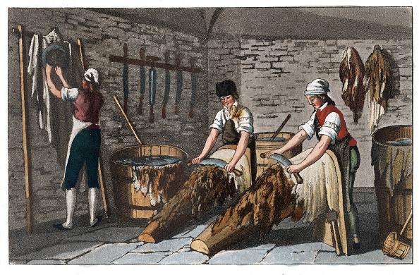 Animal Body Part「Professions: Tanner. From: Gallerie Der Vorzüglichsten Künste. Zürich  Leipzig. Colored Lithograph. 1820.」:写真・画像(12)[壁紙.com]