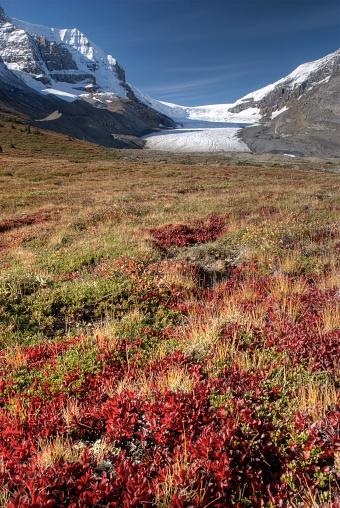 World Heritage「Columbia Icefield, Jasper National Park, Alberta, Canada」:スマホ壁紙(14)