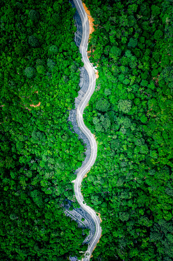 Winding Road「Aerial top view of country road in green summer forest. Rural landscape in Hong Kong」:スマホ壁紙(5)