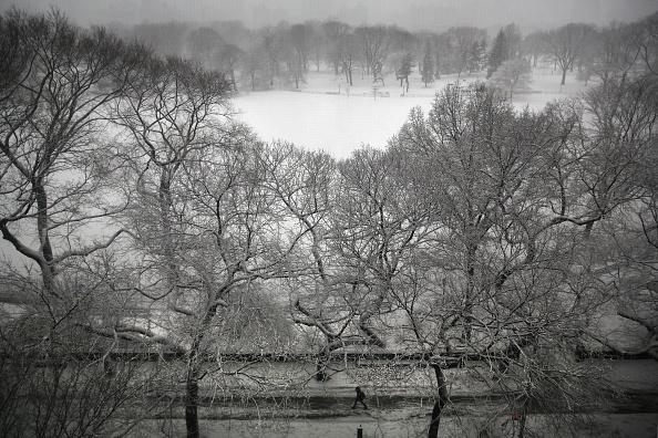 マンハッタン セントラルパーク「New York City Battles Through Another Winter Storm」:写真・画像(3)[壁紙.com]