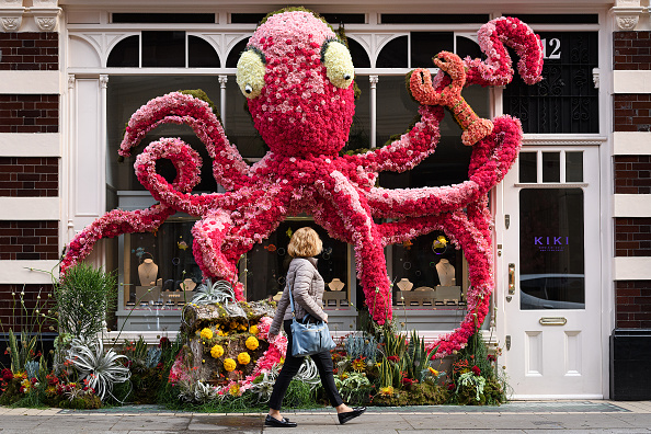 Kensington And Chelsea「Local Businesses Support The Chelsea Flower Show」:写真・画像(13)[壁紙.com]