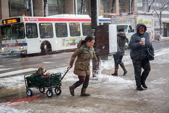 Philadelphia - Pennsylvania「Massive Snowstorm Brings Up To Foot Of Snow To Large Swath Of Northeast」:写真・画像(9)[壁紙.com]