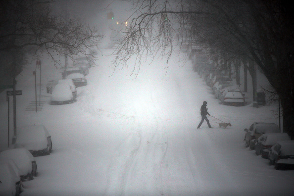 Snow「Huge Snow Storm Slams Into Mid Atlantic States」:写真・画像(7)[壁紙.com]
