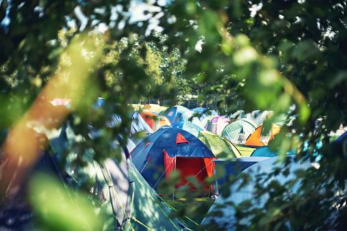 Music Festival「Camping bliss」:スマホ壁紙(5)