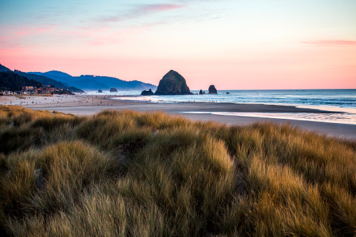 Cannon Beach「Tall grass under sunset sky on Cannon Beach, Oregon, United States」:スマホ壁紙(8)
