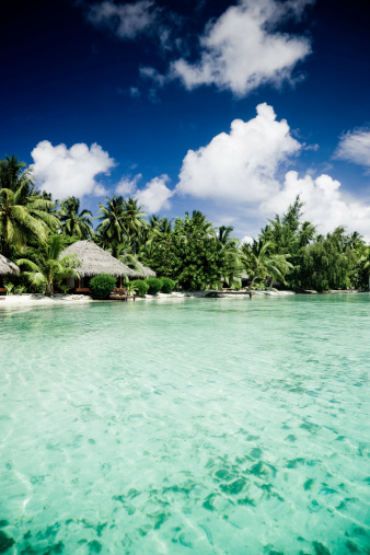 Aitutaki Lagoon「Cottages on Beach」:スマホ壁紙(19)