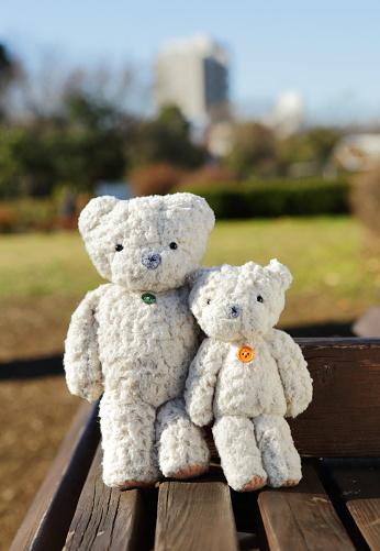 ぬいぐるみ「Two teddy bears on the park bench」:スマホ壁紙(12)