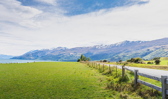 Westland - South Island New Zealand「Wide angel view green meadow farm at daytime along the country road」:スマホ壁紙(4)
