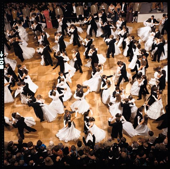 Evening Gown「Viennese Opera Ball」:写真・画像(5)[壁紙.com]