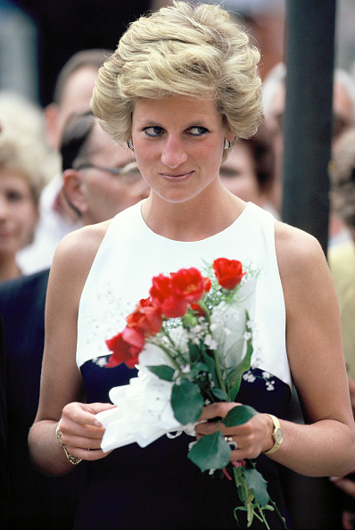 薔薇「Princess Diana In Hungary」:写真・画像(3)[壁紙.com]