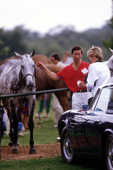 エンタメ総合「Diana Princess of Wales and Prince Charles at the end of a polo match」:写真・画像(0)[壁紙.com]