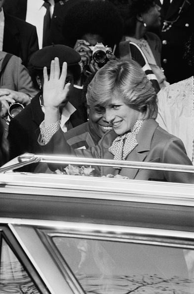 Archival「Diana in Brixton」:写真・画像(17)[壁紙.com]