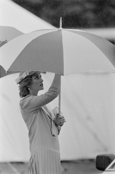 Umbrella「Diana In Bracknell」:写真・画像(9)[壁紙.com]