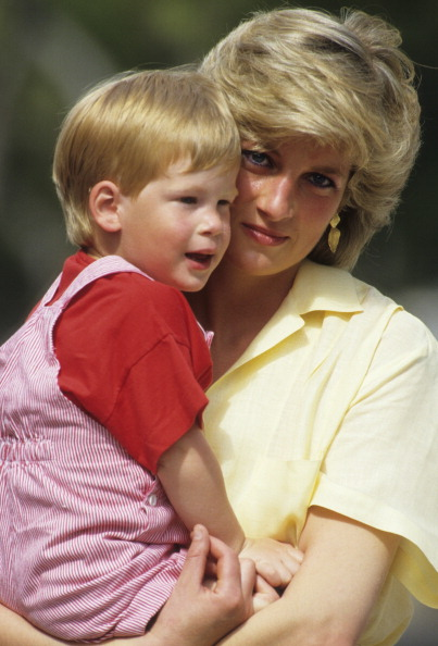 Princess Diana「Diana and Harry」:写真・画像(7)[壁紙.com]