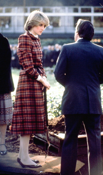 Tartan check「Diana, Princess of Wales」:写真・画像(9)[壁紙.com]