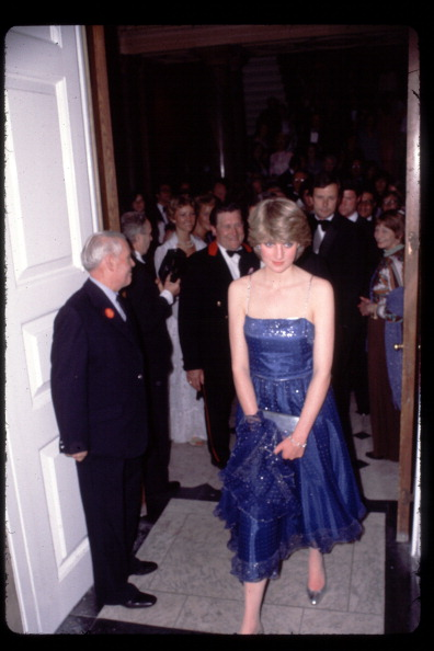 Blue Dress「Diana, Princess of Wales」:写真・画像(12)[壁紙.com]