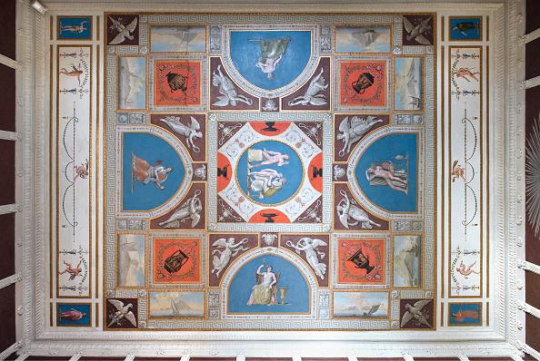Ceiling「Fireplace Rooms Of The Villa Hamilton」:写真・画像(1)[壁紙.com]