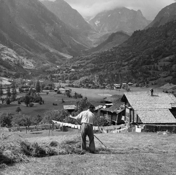 Alpine Hay Harvest:ニュース(壁紙.com)