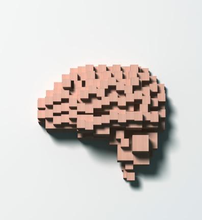Intelligence「Normal brain made of wooden blocks」:スマホ壁紙(7)