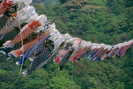 こいのぼり「Row of Carp Streamers Hanging on a Line for Childrens Day - 5 May」:スマホ壁紙(15)