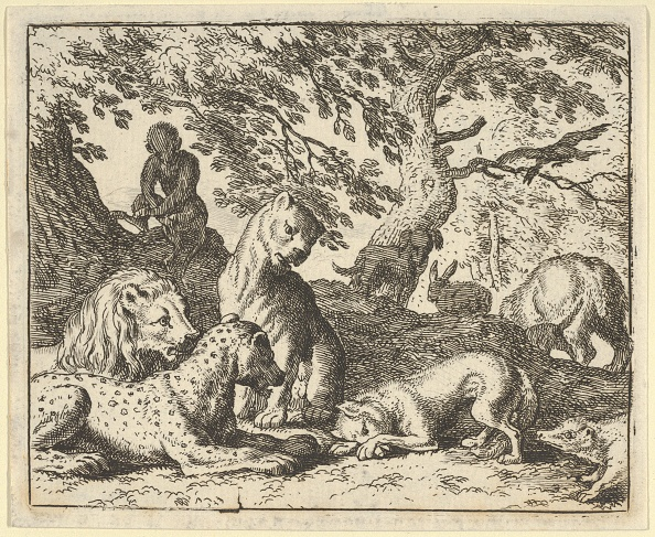 Fairy Tale「Renard Falsely Accuses His Father Of Conspiring Against The Lion」:写真・画像(19)[壁紙.com]