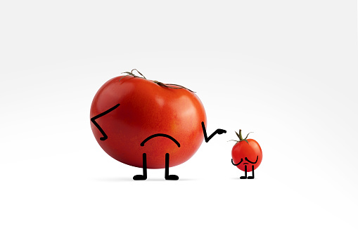 Cartoon「The big tomato bully with illustrated facial expressions apologizes to little tomato」:スマホ壁紙(3)